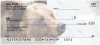 Grizzly Bears Personal Checks | ANI-12