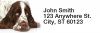 English Spaniels Narrow Address Labels | LRRDOG-101