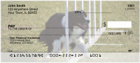Agility Border Collies Personal Checks | DOG-45