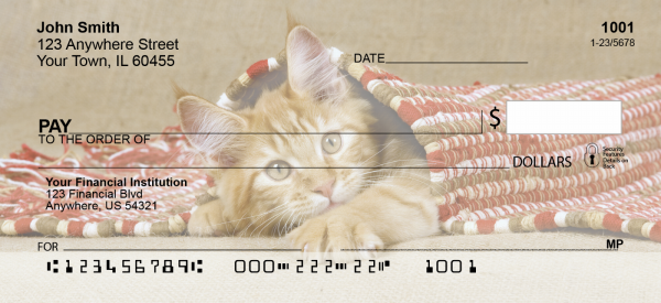 Cute Kittens Top Tear Personal Checks | ANI-06