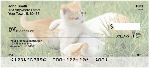 House Cats, the Kittens Personal Checks | ANI-87
