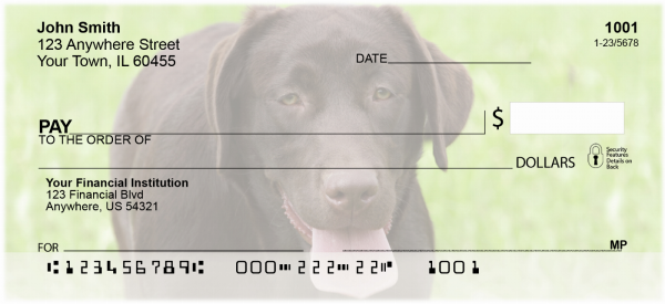O So Chocolate Labs Personal Checks | DOG-54