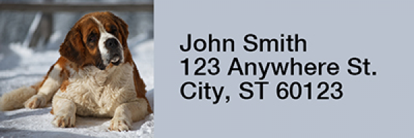 Saint Bernard Narrow Address Labels | LRRDOG-108